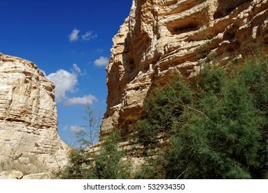 Scenic cliffs of Ein Avdat (Ein Ovdat) gorge in Israel