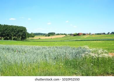 Scenic countryside in Ardennes, Belgium