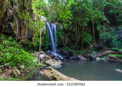 Scenic Curtis Falls in Tamborine National Park, Queensland, Australia