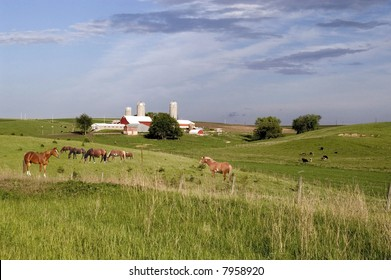 a scenic dairy farm in wisconsin with cattle and horses grazing