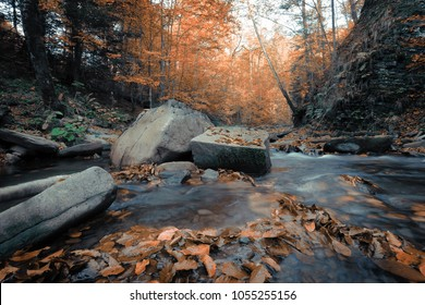 scenic dawn landscape, river in gold sunlight autumn forest, breathtaking colorful scenery , falled leaves on  stones near fast stream, Europe wallpaper background image