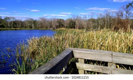 Scenic Deck Overlooking Lake