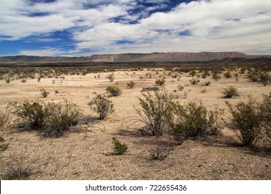 Scenic Desert Landscape in Big Bend National Park, Texas