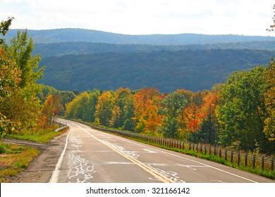 Scenic drive through autumn trees
