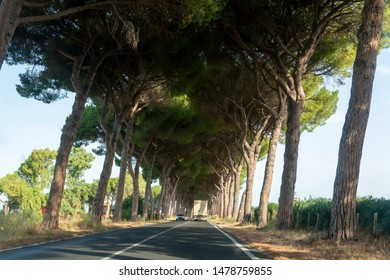 Scenic driving on new via Appia road S7 with high green  mediterranean pine trees connected Rome, Latina and Terracina, Italy