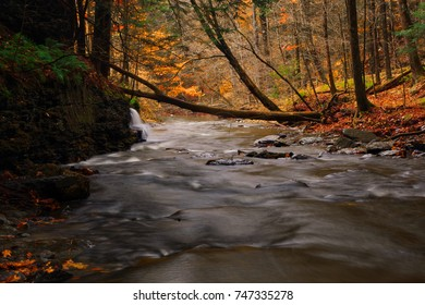 Scenic fall stream in Upstate New York