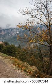 Scenic foggy autumn landscape in mountains near Kalavrita on Peloponnesse in Greece