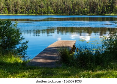 scenic forest lake in sunny summer day with green foliage and shadows. calm water with reflections of clouds