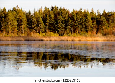 Scenic forest landscape during fall with lake and reflection in Smaland, Sweden.