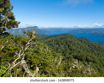 Scenic forest wilderness landscape of Urewera National Park with blue surface of Lake Waikaremoana  Hawke's Bay district of North Island of New Zealand