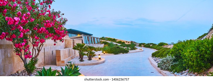 The scenic garden with blooming bushes, succulent plants and green shrubs is landscaped in coastal area of Tigne Point peninsula, Sliema, Malta