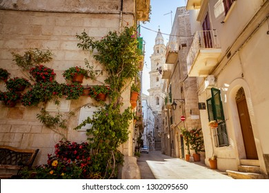 Scenic green flowers on the street corner and cathedral tower in Monopoli, Italy