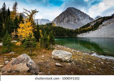 Scenic hiking views of Chester Lake area, in Autumn with Golden Larch Pine trees. Peter Lougheed Provincial Park Alberta Canada