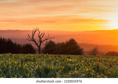 Scenic hills of Shropshire in warm sunset light
