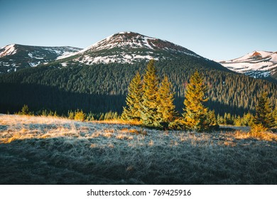 Scenic image of the wilderness area. Location Carpathian national park, Ukraine, Europe. Picture of lifestyle hiking concept. Adventure summer vacations. Explore the beauty of earth and wildlife.