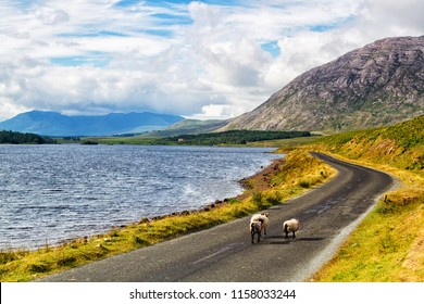 Scenic Inagh Valley during long days of Irish summer. Beautiful landscape of surrounding mountains called Twelve Bens