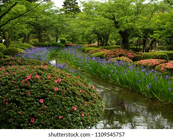 Scenic Kenroku-en garden (Six Attributes Garden) with colorful flowers in the heart of Kanazawa, Ishikawa Prefecture, Japan, Asia