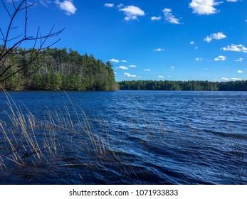 Scenic Lake Rico in Massasoit State Park, Taunton, Massachusetts