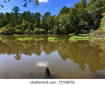 Scenic lake texas