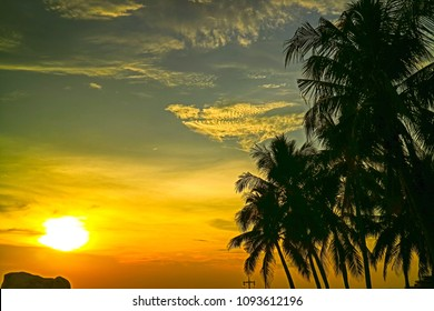 scenic landscape  before sunset with silhouette coconut tree at seaside so beautiful pattern for outdoor background
