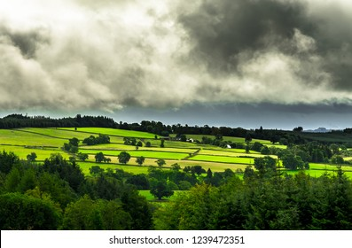 Scenic Landscape With Forest And Pastures In Scotland