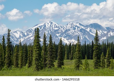 Scenic Landscape with mountains on the background