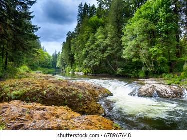 A scenic landscape near Aberdeen Washington.