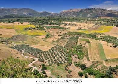 Scenic landscape near Ronda, Andalusia, Spain.