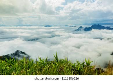 Scenic landscape on foggy hill at sunrise.