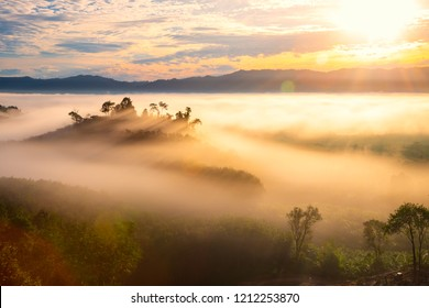 Scenic landscape on foggy hill at sunrise, Long exposure of Foggy landscape.