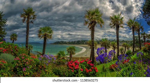 Scenic landscape in Perros Guirec, Brittany in France, with vivid blooming flowers and high palm trees at Trestraou sand beach near Atlantic ocean with azure water in the sea