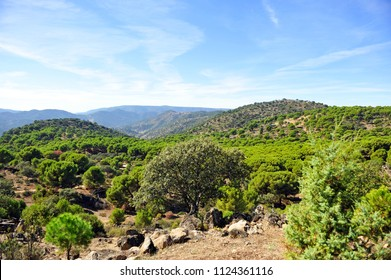 Scenic landscape of the Sierra de Andujar Natural Park, Sierra Morena in the province of Jaén, mountainous area with large pine forests in the north of Andalusia, Spain