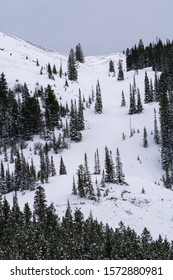 Scenic landscape of snowy mountains and forest