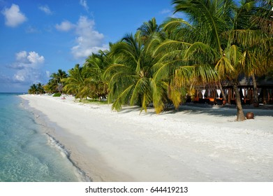 Scenic landscape of sunny tropical ocean beach shoreline with white sand, coconut palm trees and blue sky. Idyllic scenery of seaside resort. Exotic travel destination for holiday and vacation