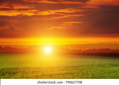 Scenic landscape of sunrise over green wheat field. Free space for text.