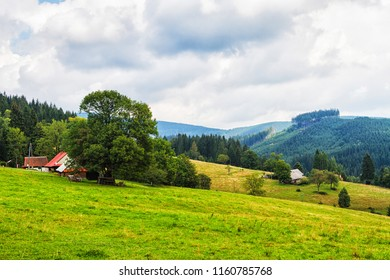 Scenic landscape of tranquil Silesian Moravian Beskids in Czech Republic on cloudy summer day.