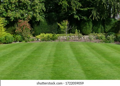 A Scenic Landscape View of a Beautiful English Style Garden with a Fresh Mowed Lush Grass Lawn, Colourful Flower Bed and Leafy Green Foliage