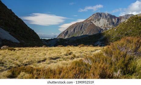 Scenic landscape view of Mount Seabastopol and grass fields at Hooker Valley, Aoraki/Mount Cook National Park, South Island of New Zealand