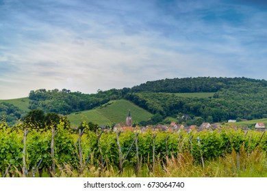 Scenic landscape with wooded hills and vineyards with a small town or village visible in the background