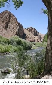 A scenic, life-giving river runs through a dry, rocky desert landscape surrounded by thriving plant life in the western USA