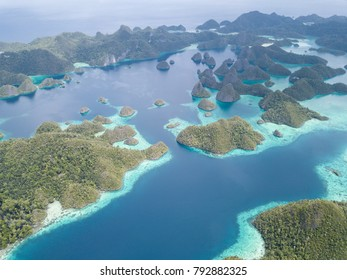 Scenic limestone islands in Wayag, Raja Ampat are surrounded by healthy, shallow coral reefs. This remote, tropical region is known for its extraordinary marine biodiversity.
