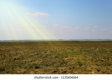 Scenic marsh landscape under sunlight and blue sky, seen in Friesland, Northern Germany at the Wadden Sea. Copy space for text, concept of nature, wideness, environmental awareness.