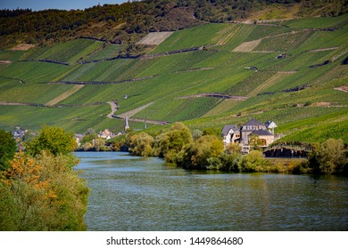 Scenic Moselle river winds through the wine country near Bernkas