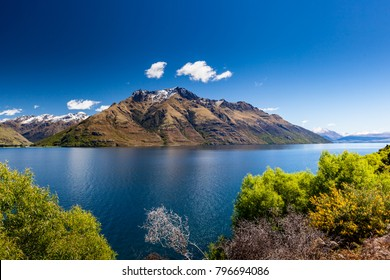 Scenic mountain, lake landscape with bush in foreground