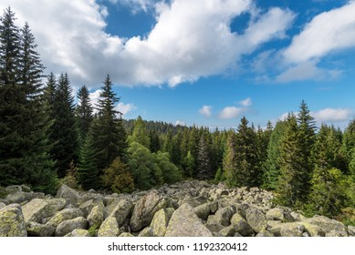 Scenic mountain landscape shot in summer.