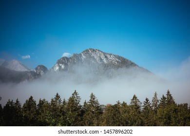 Scenic mountain peaks towering in fog above the trees against blue sky during sunny morning