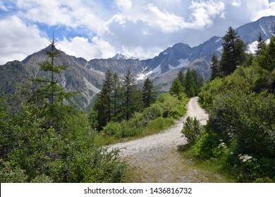 Scenic mountain road and hiking trail with green trees and snowy mountain ridges towards Presena Glacier cableway close to Tonale Pass, in northern Italy between Valcamonica and Val di Sole, summer
