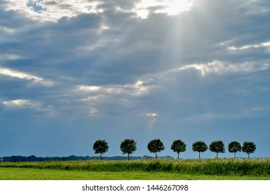scenic natural background picture with a row of green trees, a green meadow and beautiful cloudy sky with sunrays