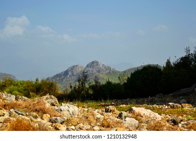 Scenic natural landscape at Aspendos, Turkey with brown and yellow grasses at foreground, dark green treeline and mountaintops at background, and bright blue skies.