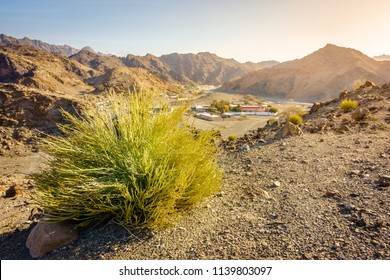 Scenic overlook of Al Hajar mountains in the emirate of Fujeirah, UAE and a village in a valley
